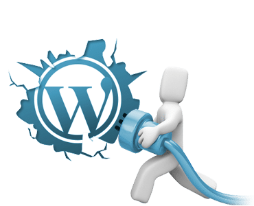 wpfixit-code